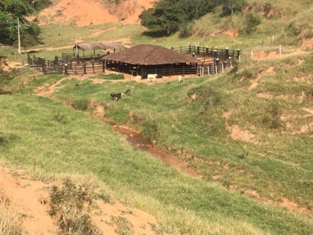Fazenda 455.96 hectares - Governador Valadares/MG - Foto 7