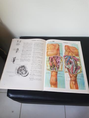 Grande Atlas de Anatomia Humana - Foto 3