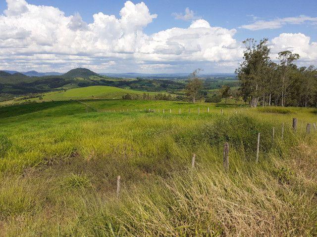 Fazenda Agricultura e Pecuária-Completa Arrendamento - Foto 15