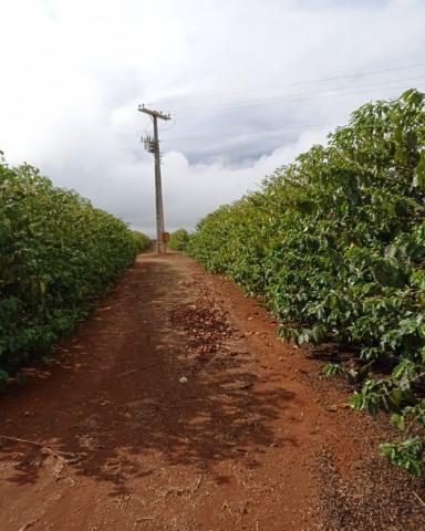 Sítio em Araguari - MG com 21 hectares - Foto 4
