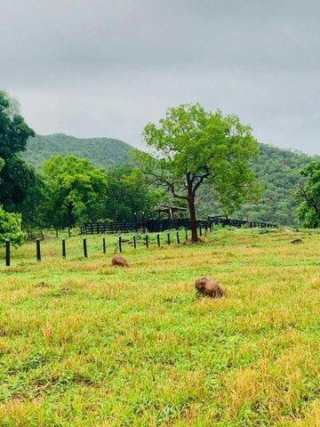 Fazenda Na Região da Agrovila