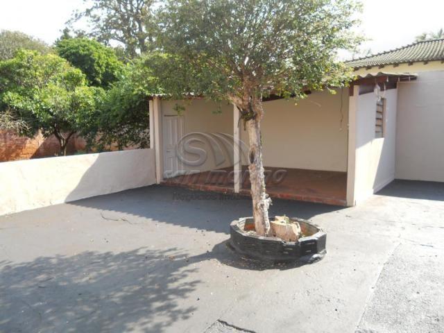 Casa à venda com 3 dormitórios em Centro, Jaboticabal cod:V4446 - Foto 16
