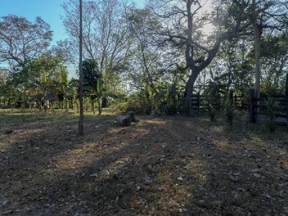 Chácara à venda em Zona rural, Santo antonio do leverger cod:21685 - Foto 12