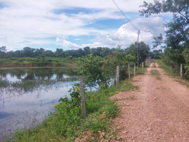 Chácara à venda em Zona rural, Cuiaba cod:20802 - Foto 8
