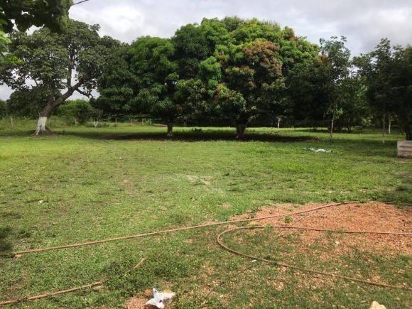 Chácara à venda em Zona rural, Cuiaba cod:21135 - Foto 8