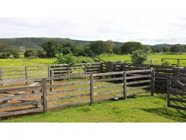 Chácara à venda em Zona rural, Nobres cod:20818 - Foto 7