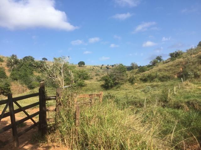 Fazenda 455.96 hectares - Governador Valadares/MG - Foto 15