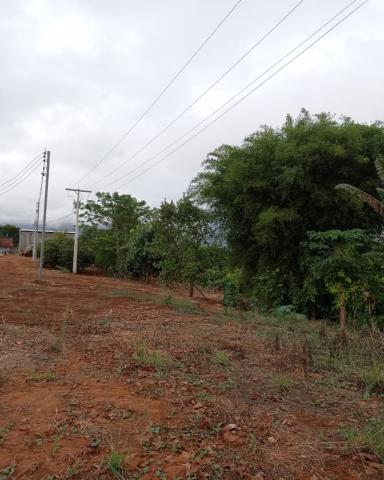 Sítio em Araguari - MG com 21 hectares - Foto 19