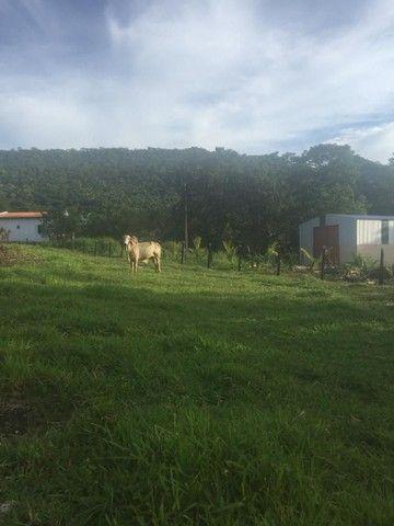 Fazenda Na Região da Agrovila  - Foto 8