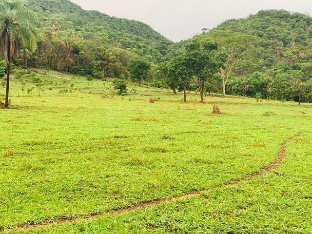 Fazenda Na Região da Agrovila  - Foto 3