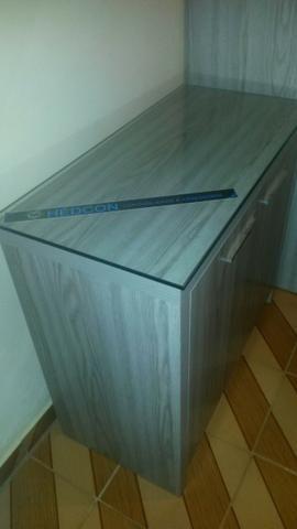 Armário com 2 portas R$ 450,00