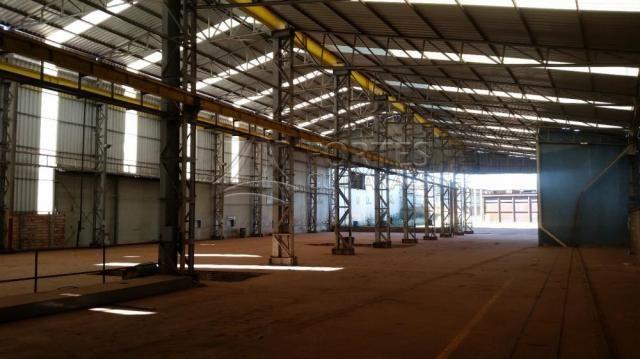Loja comercial para alugar em Zona industrial, Sertaozinho cod:L18898 - Foto 6