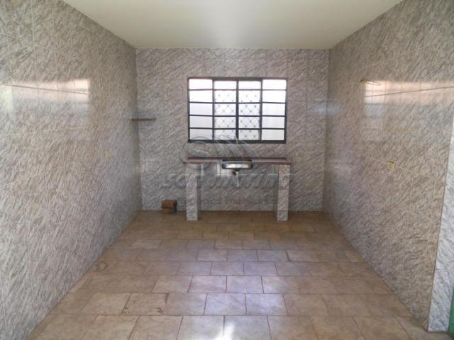 Casa para alugar com 2 dormitórios em Parque jaqueline, Jaboticabal cod:L4279 - Foto 9