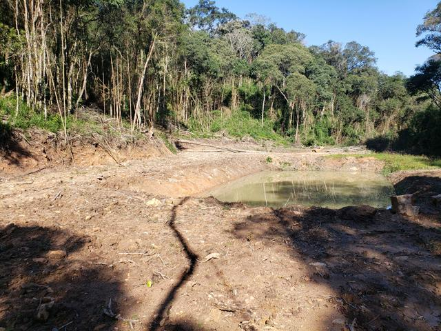 Chácara Agudos do Sul - 50 mts da Br c/ Tanque e rio - Foto 10