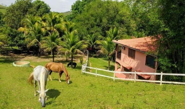 Jordão corretores - Lindo sítio/pousada em santana de Japuíba. - Foto 4
