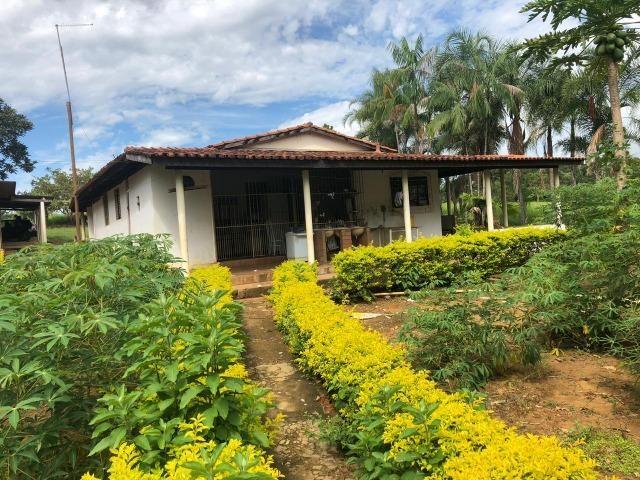 Fazenda em Bela Vista de Goiás de 15 Alqueires, à 45 km de Goiânia Dentro da Cidade - Foto 13