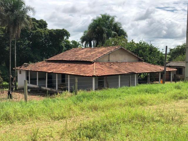 Fazenda em Bela Vista de Goiás de 15 Alqueires, à 45 km de Goiânia Dentro da Cidade - Foto 18