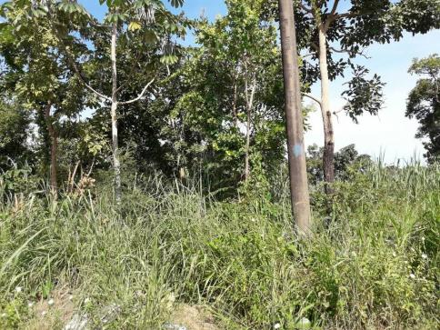 Loteamento/condomínio à venda em Jardim presidente i, Cuiaba cod:21141 - Foto 2