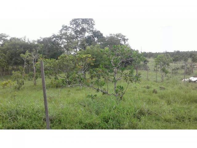 Chácara à venda em Zona rural, Cuiaba cod:21259 - Foto 7