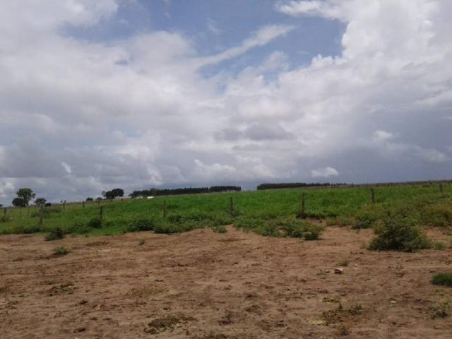 Chácara à venda em Rural, Nova mutum cod:22068 - Foto 13