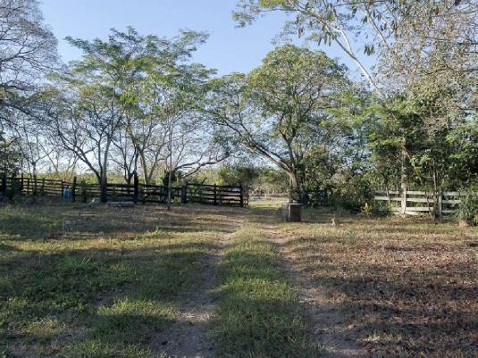 Chácara à venda em Zona rural, Santo antonio do leverger cod:21685 - Foto 6