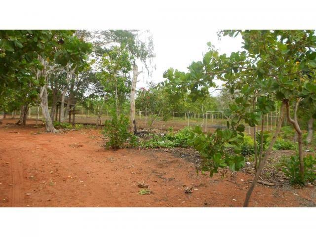 Chácara à venda em Zona rural, Chapada dos guimaraes cod:20937 - Foto 15