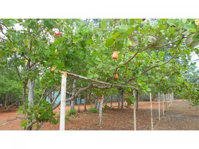 Chácara à venda em Zona rural, Chapada dos guimaraes cod:20937 - Foto 2