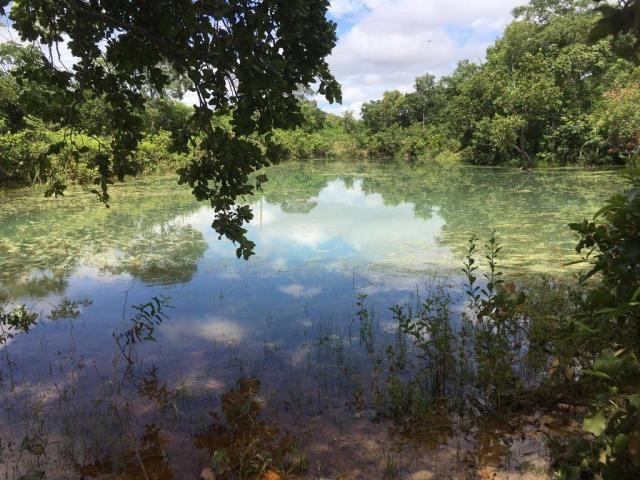 Chácara à venda em Zona rural, Cuiaba cod:21135 - Foto 15