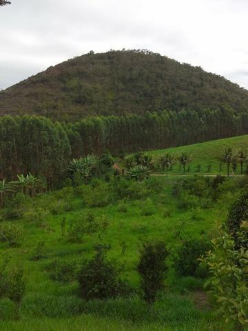 Fazenda 159,72 hectares - Leopoldina/MG; - Foto 7