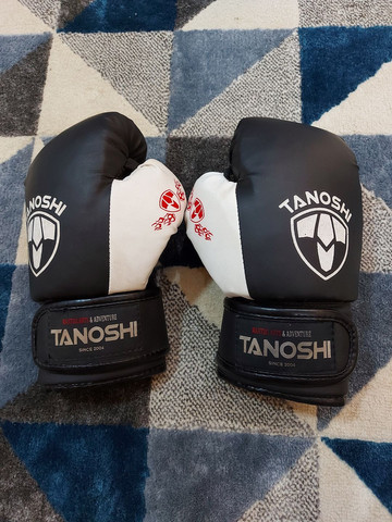 LUVAS PARA ESPORTES (Muay thai, boxe etc...) - Foto 6