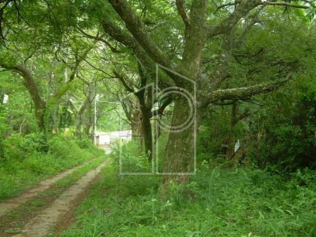 Terreno para alugar em Jardim santa teresa, Jundiai cod:L1687 - Foto 5
