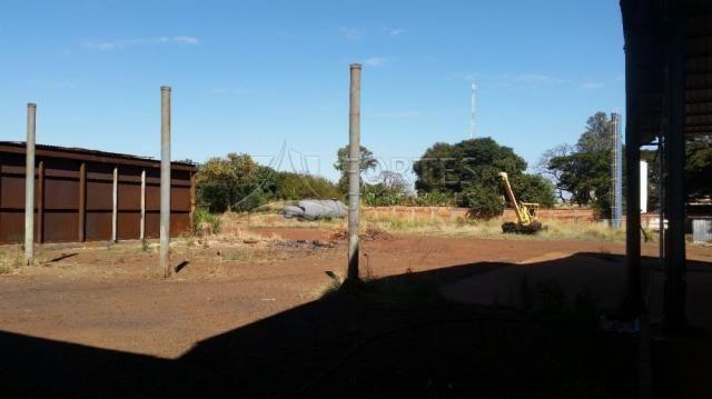 Loja comercial para alugar em Zona industrial, Sertaozinho cod:L18898 - Foto 16