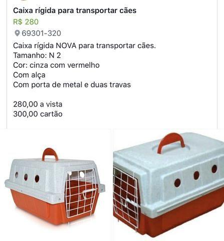 CAIXA RÍGIDA para transporte de animais