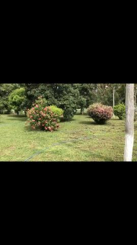 Fazenda em Rosário Oeste 1.460 hectares á venda - Foto 7