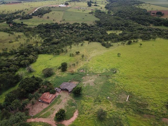 Fazenda em Bela Vista de Goiás de 15 Alqueires, à 45 km de Goiânia Dentro da Cidade - Foto 9