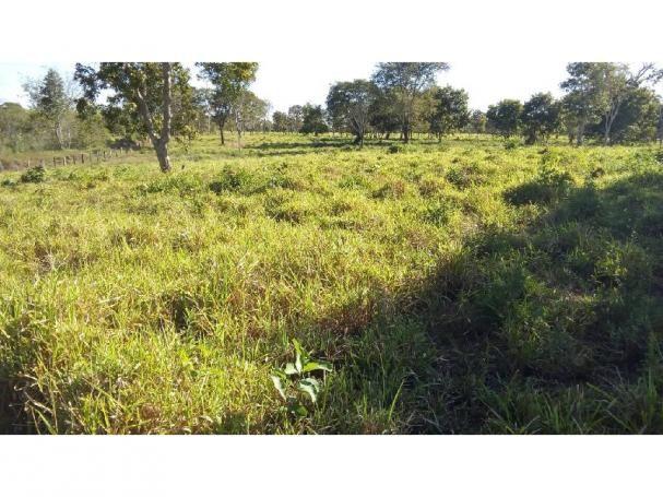 Chácara à venda em Zona rural, Pocone cod:20534 - Foto 11