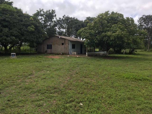 Chácara à venda em Zona rural, Cuiaba cod:21135 - Foto 7