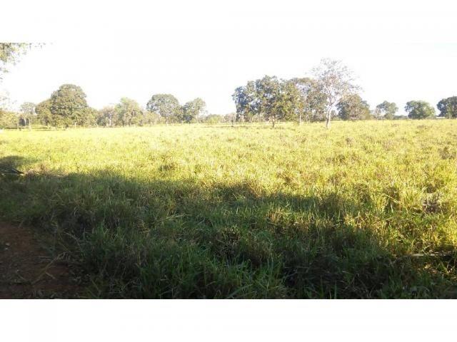 Chácara à venda em Zona rural, Pocone cod:20534 - Foto 10