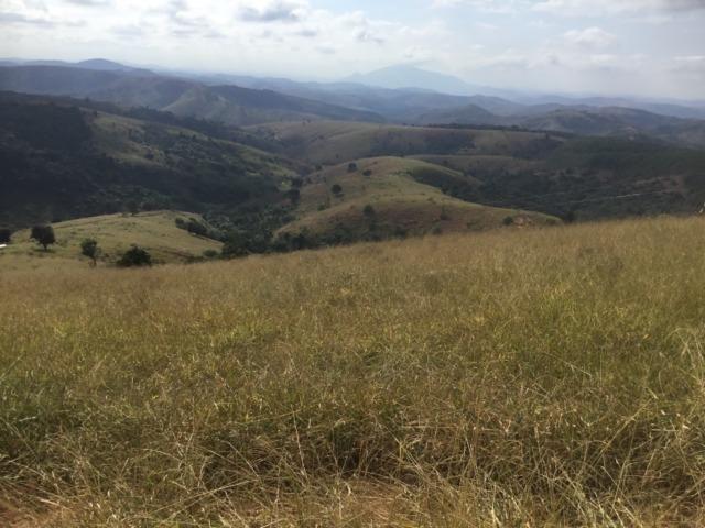 Fazenda 455.96 hectares - Governador Valadares/MG - Foto 9