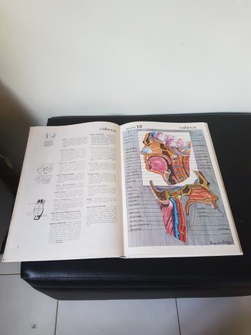 Grande Atlas de Anatomia Humana - Foto 2