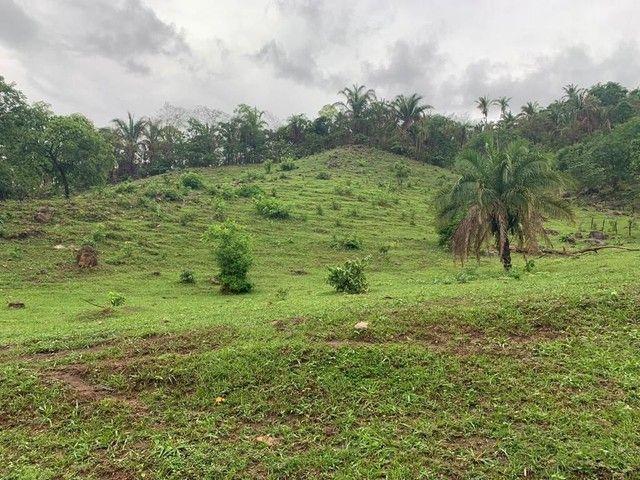 Fazenda Na Região da Agrovila  - Foto 20