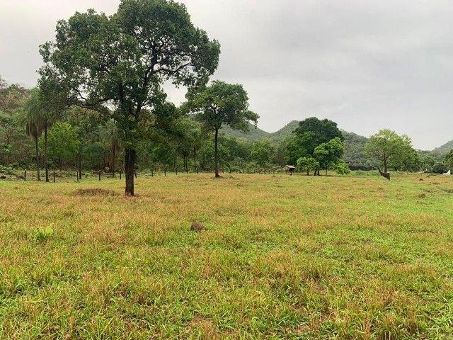 Fazenda Na Região da Agrovila  - Foto 17