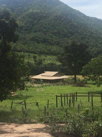 Fazenda Na Região da Agrovila  - Foto 2