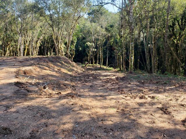 Chácara Agudos do Sul - 50 mts da Br c/ Tanque e rio - Foto 9