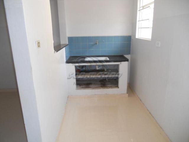 Casa à venda com 3 dormitórios em Centro, Jaboticabal cod:V4446 - Foto 12