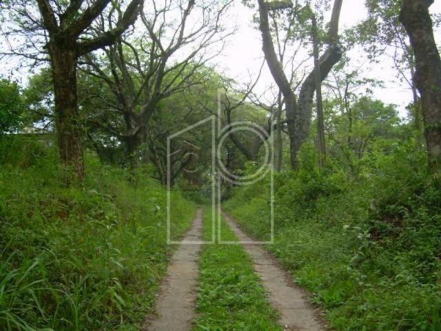 Terreno para alugar em Jardim santa teresa, Jundiai cod:L1687 - Foto 6
