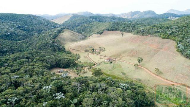 Fazenda com 588,71 hectares, situada na estrada Friburgo-Teresópolis, na altura de Vieira - Foto 2