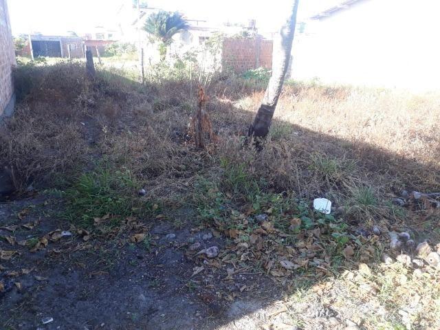 Terreno 8x20 em São José da Coroa Grande - Foto 6