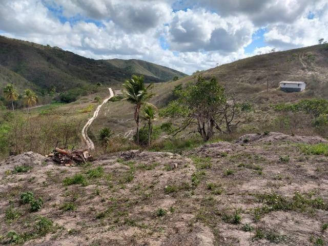 Sitio com 3 hectares Por Trás do Hotel highlander em Gravatá-PE - Foto 13