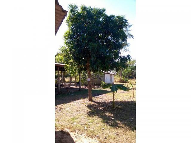 Chácara à venda em Zona rural, Santo antonio do leverger cod:21685 - Foto 9